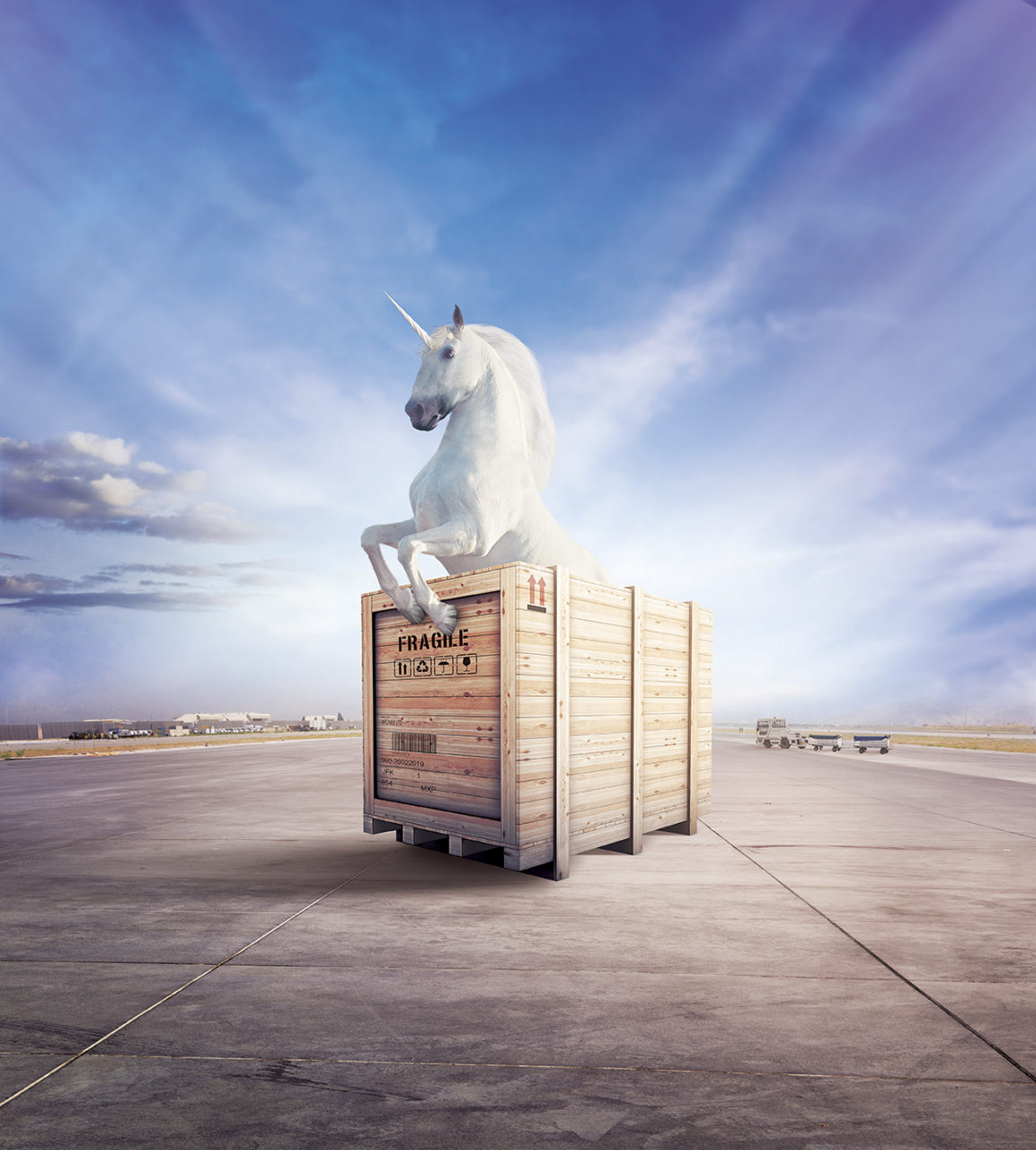 unicorno campagna Winkler+Noah